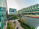 xi an jiaotong liverpool university