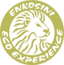 Enkosini Eco Experience Logo