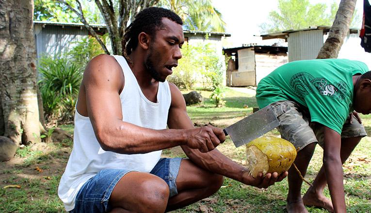 Fijian man opening a fresh coconut