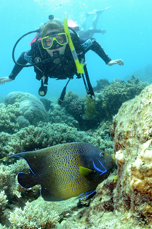 Scuba diving at the Great Barrier Reef in Australia