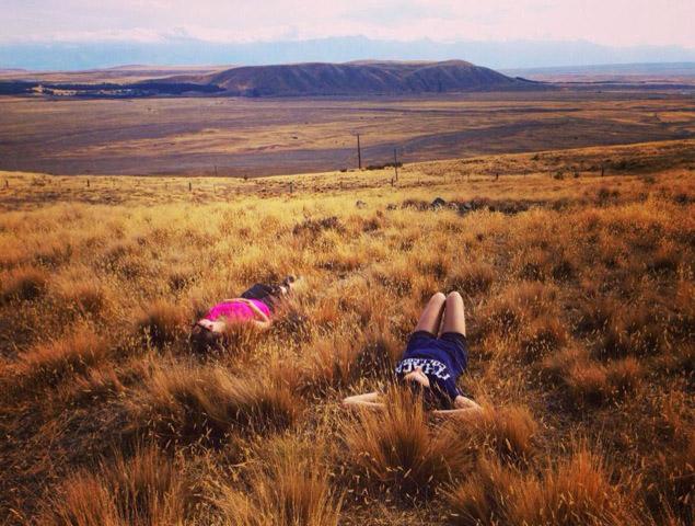 Resting near Lake Tekapo in New Zealand