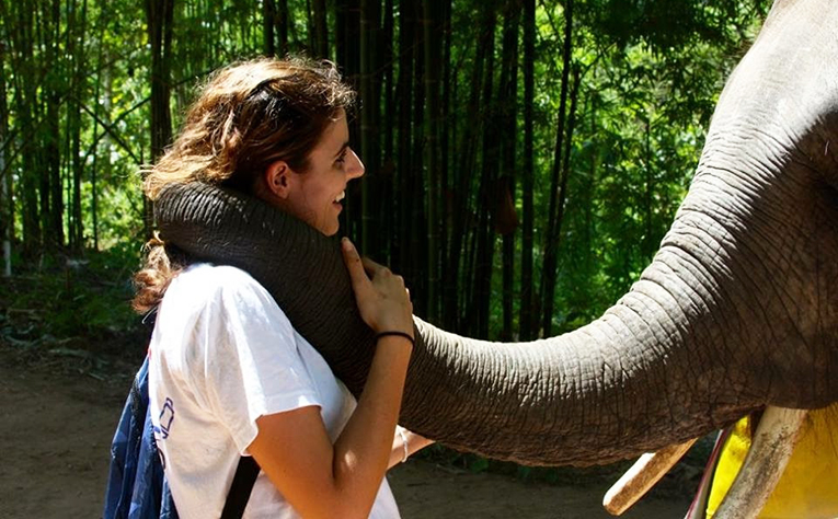 Elephant hugging a tourist with its trunk