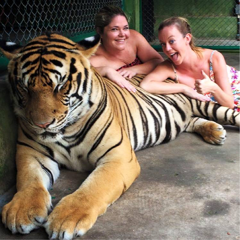 Tiger Kingdom, Phuket, Thailand