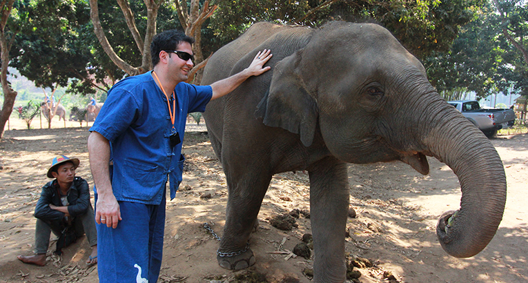 Volunteer with an elephant in Thailand