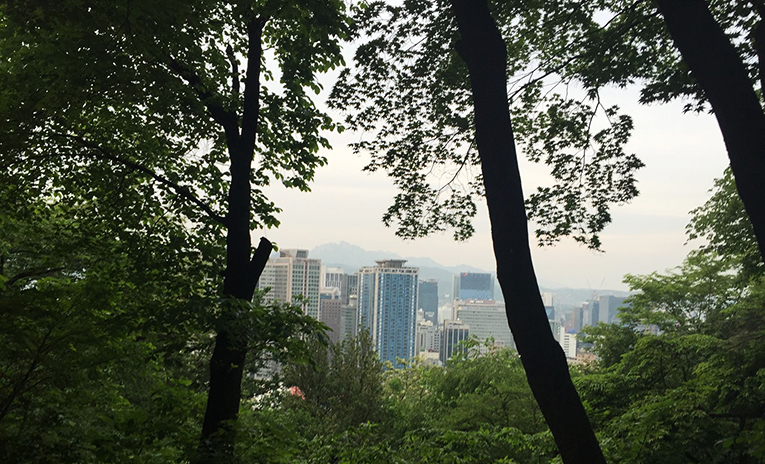 View of Seoul from the forest