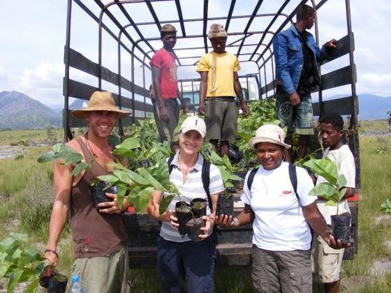 Volunteers with tree seedlings