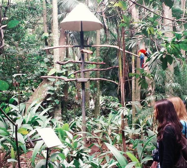 Zoo Ave Rescue Center, Costa Rica.