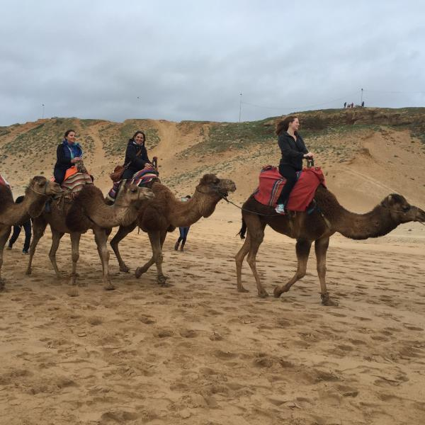During an excursion in Morocco -  - Educational tour in Spain