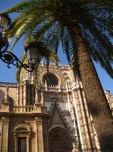 Semester Internship- Seville, Spain