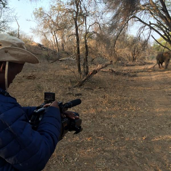 Student filming elephant at Beyond Borders Film School