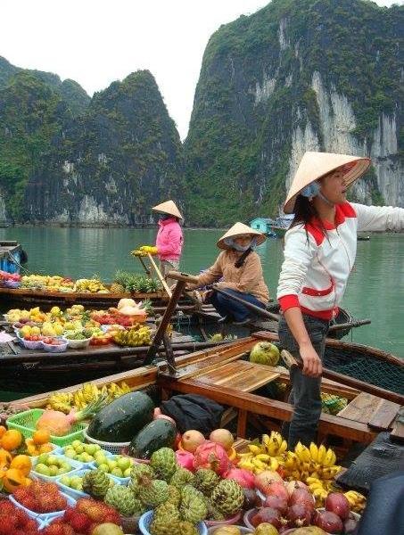 Enjoy the tropical climate of Vietnam!