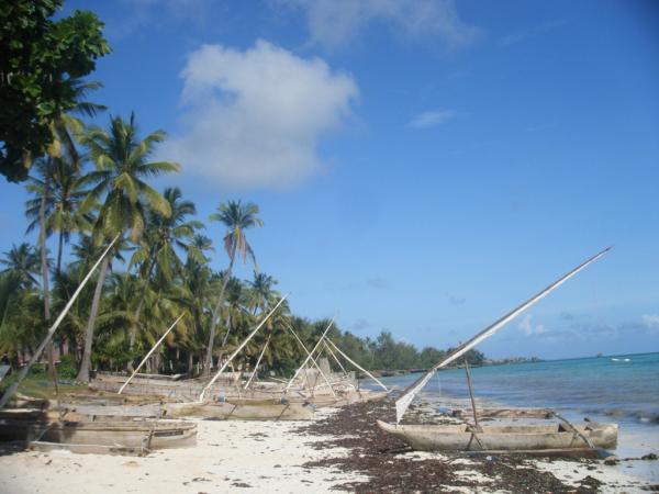 The shore of Zanzibar
