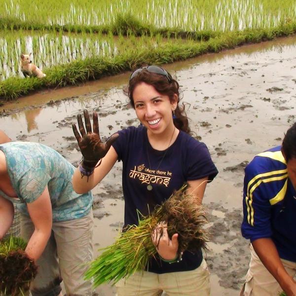 Cambodia, Summer, Development