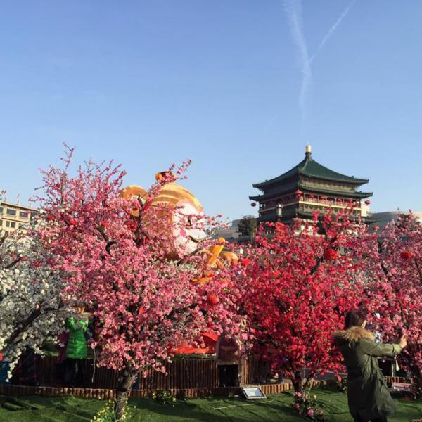Teaching English in China!