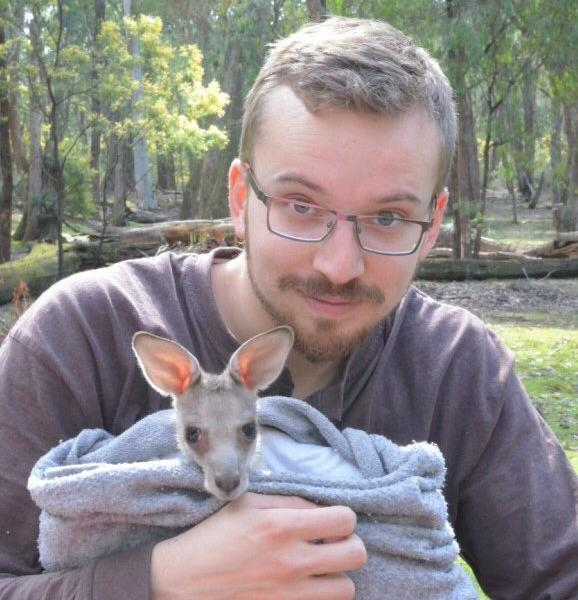 Oceans 2 Earth Volunteers Foundation Volunteering with Australian Wildlife Kangaroo
