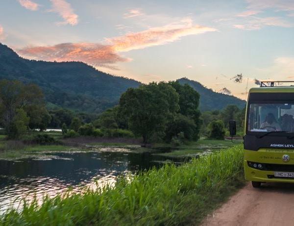 elephant friendly bus