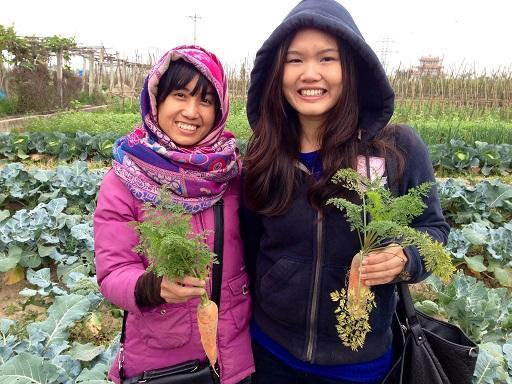 hanoi-volunteer-abroad