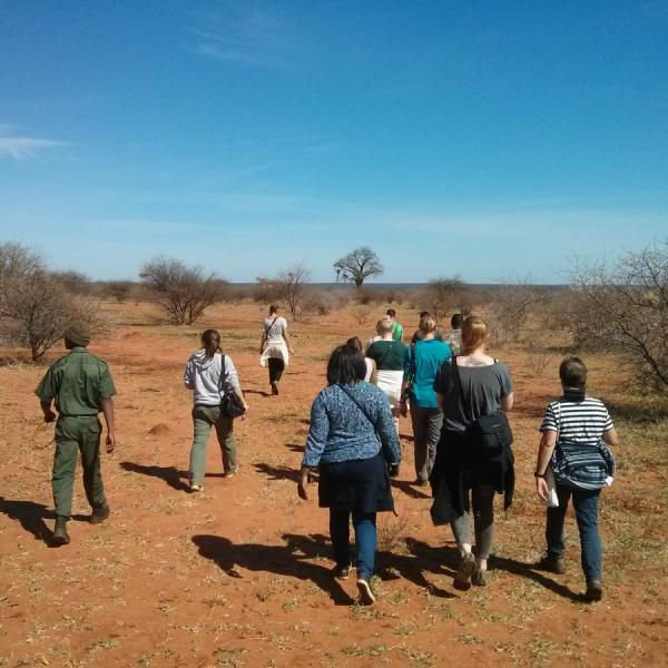 Walking with guides on the reserve