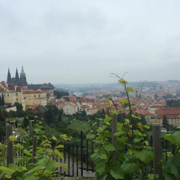 A Prague journalism and photography internship with a magazine