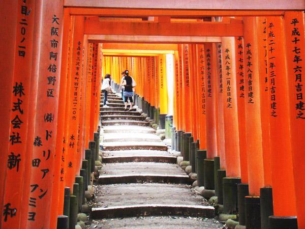 Athena Study Abroad Kyoto, Japan