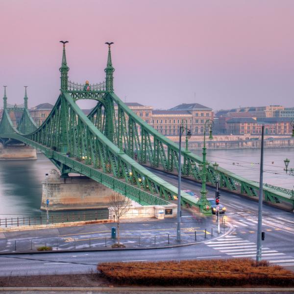 The Liberty Bridge in Budapest