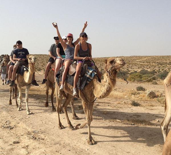 Volunteer Programs in Israel