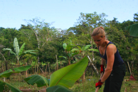 Environmental Conservation in Panama with Love Volunteers!