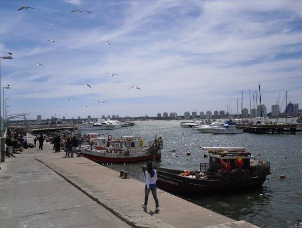 Punta del este Uruguay Montevideo