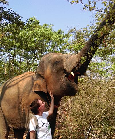 Care for Elephants in an Elephant Center in Thailand | travellersworldwide.com