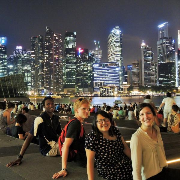 Cultural Vistas Fellowship