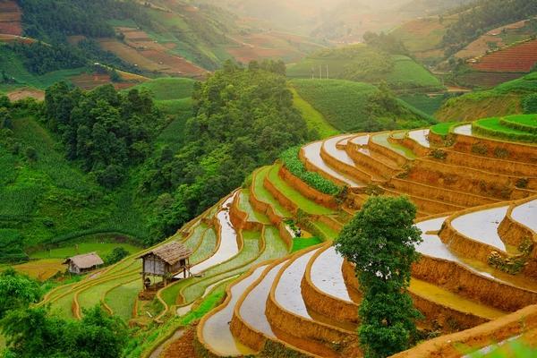 Adventure Awaits in Vietnam!