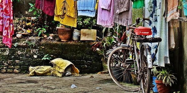 bicycle-clotheslines-rural-india-abroad