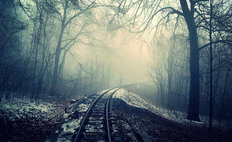 creepy and haunted woods with railroad tracks
