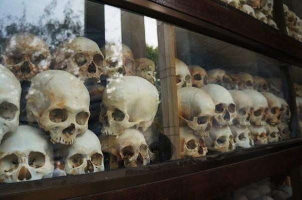 skulls on display