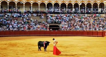 A Traditional Spanish Event.