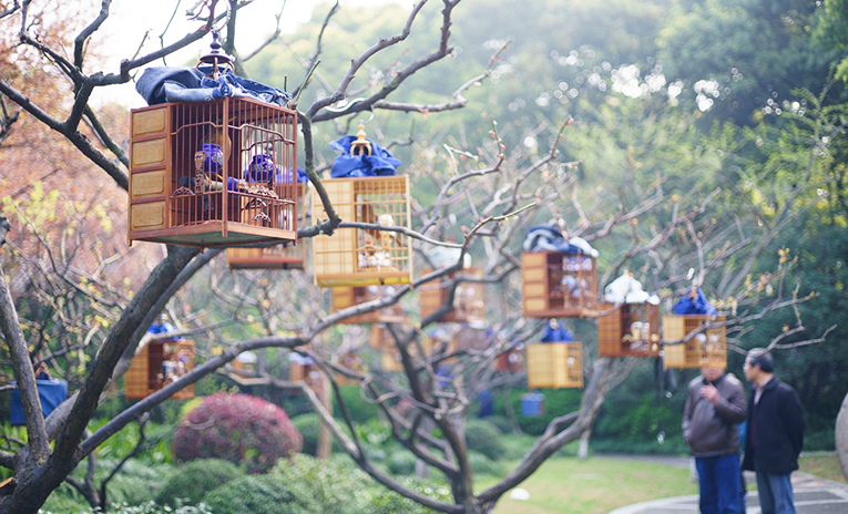 Birdcages in a park in Shanghai, China