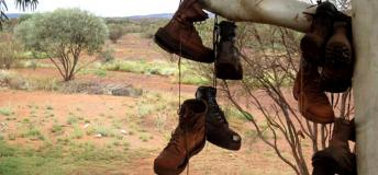 Boots handing on a tree in the Outback