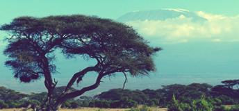 Mt. Kilimanjaro, Kenya