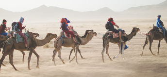camel caravan through the desert