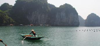 Rowboats out on Ha Long Bay, Vietnam, a wonderful place to teach english in Vietnam.