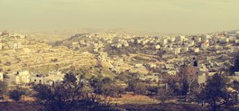 Palestine City
