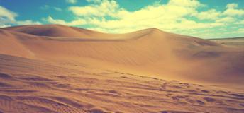 Sand dunes in the oldest desert in the world, the Namib Desert.